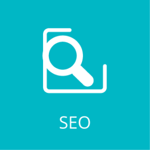Search Engine Optimization SEO Service